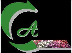 SCEA Chamoulaud - Tapis de Fleurs